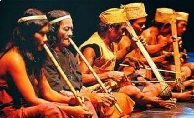 Alat Musik Tradisional yang Dipetik Tutuba