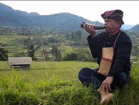Alat Musik Tradisional Padang Pupuik Tanduak