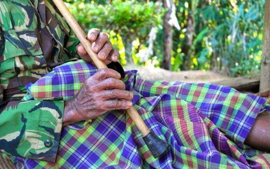 Alat Musik Tradisional yang ditiup Suling Lembang